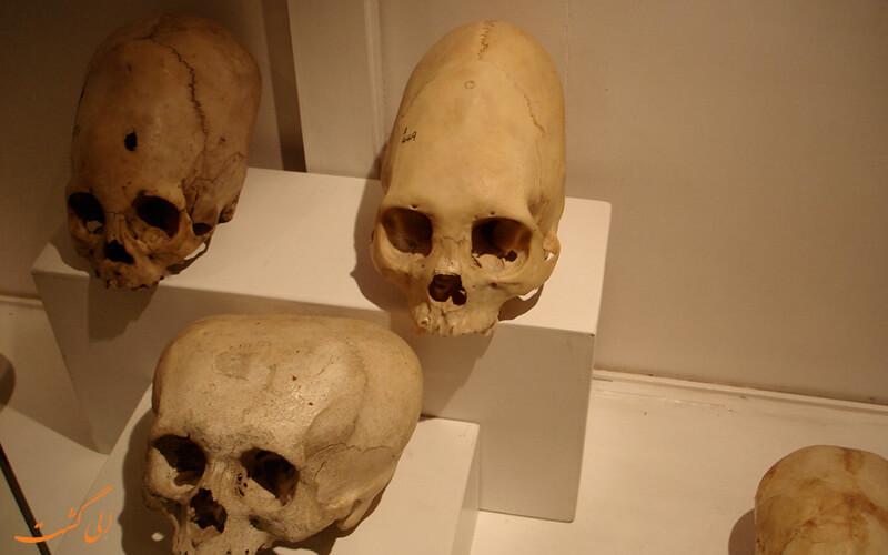 موزه ای تماشایی در پرو