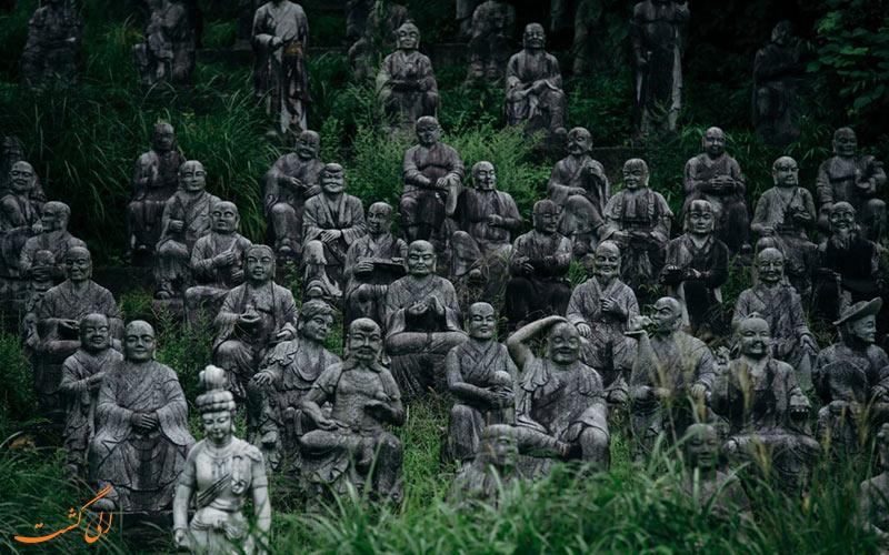 جنگل ترسناک ژاپن