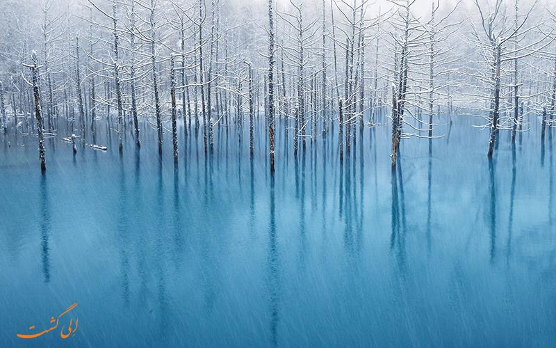 تالاب آبی | بک گراوند دسکتاپ