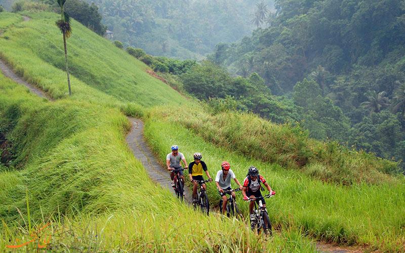 تور دوچرخه سواری
