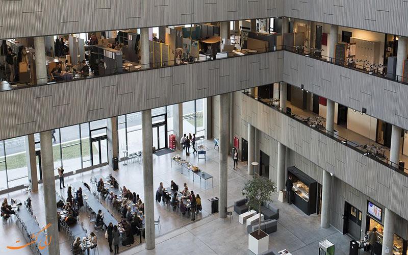 دانشگاه آلبورگ