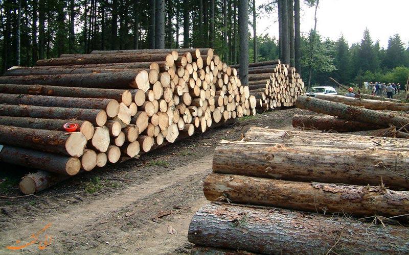 نابودی جنگل های هیرکانی