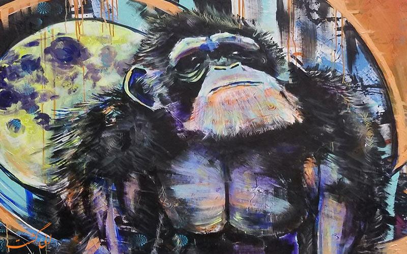 میمونهای اسطوره ها و افسانه ها