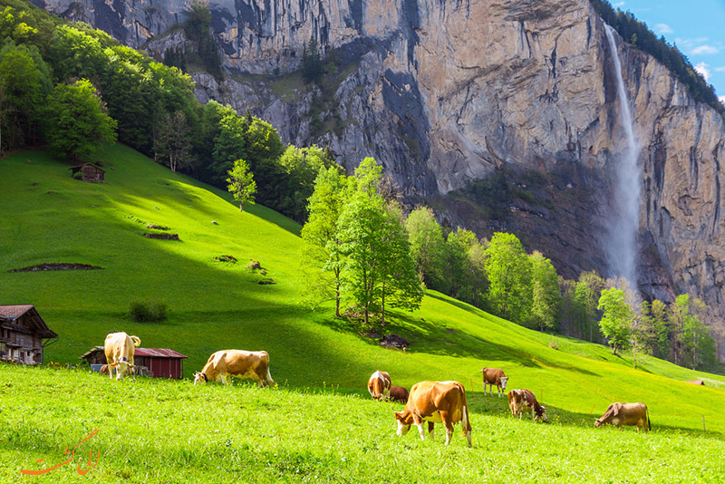 طبیعت لاتربرونن سوییس