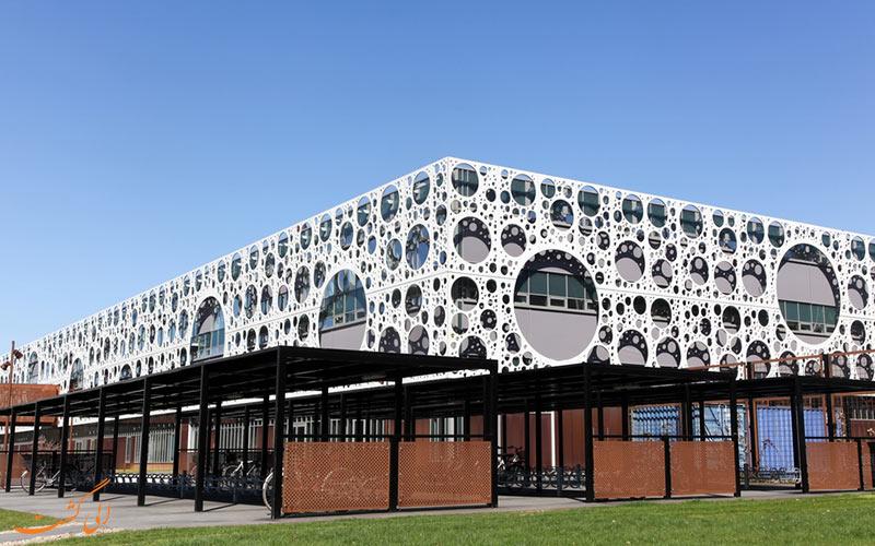 دانشگاه دانمارک جنوبی