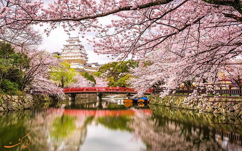 قلعه هیمجی در بهار