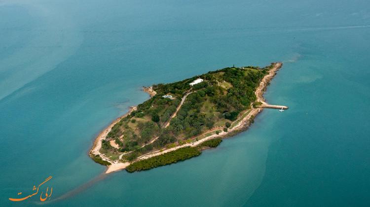 جزیره لاک پشتی