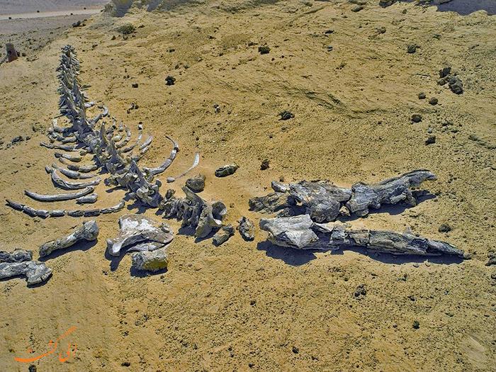 قبرستان وال ها مصر