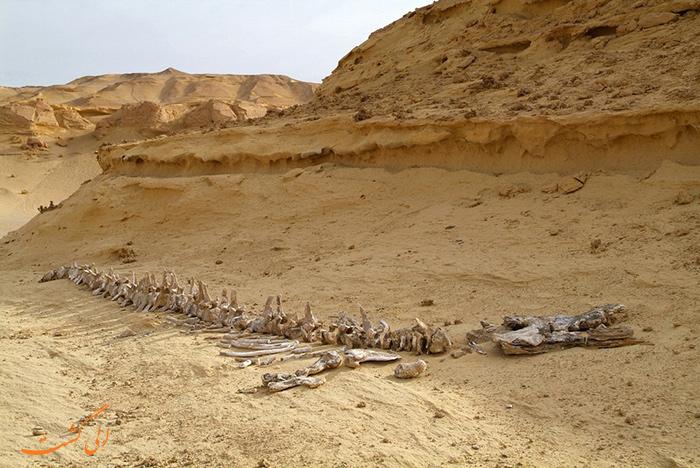 قبرستان وال ها در مصر