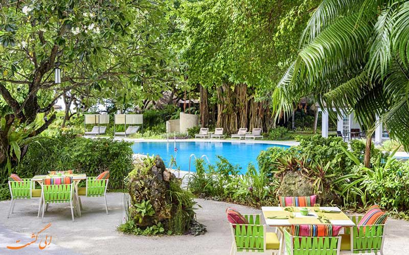هتل شرایتون فول مون مالدیو | کافه