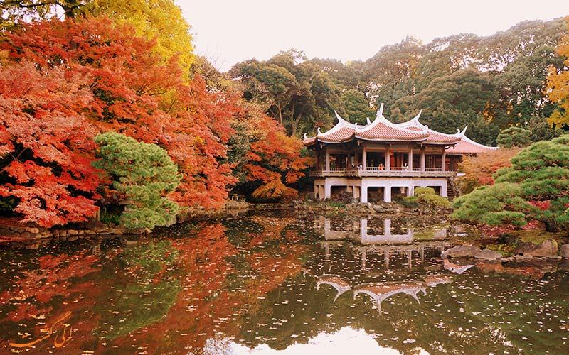 • باغ گیاهشناسی شینجوکو گیون