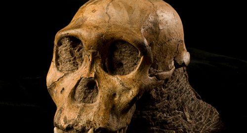 قدیمی ترین پوست کشف شده ی انسان در جهان