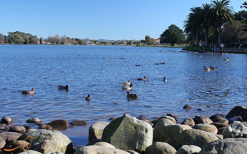 دریاچه هامیلتون