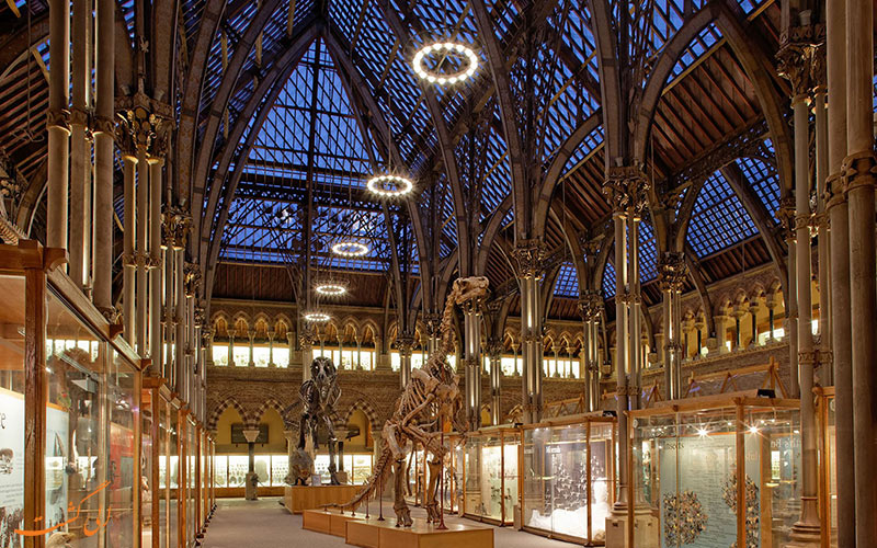 موزه تاریخ طبیعی دانشگاه آکسفورد