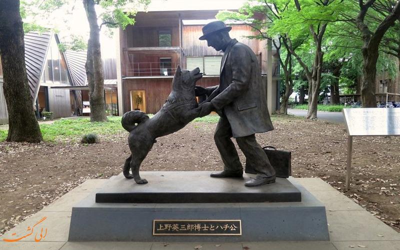 دانشگاه توکیو و هاچیکو