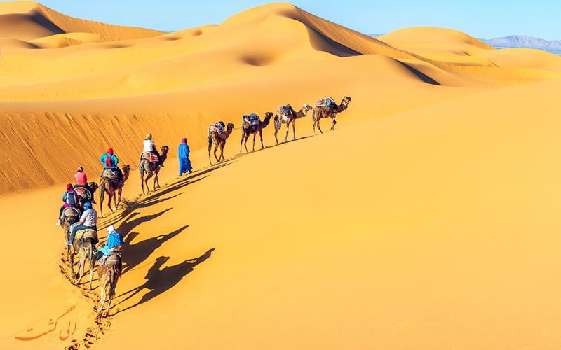 شتر سواری در مراکش