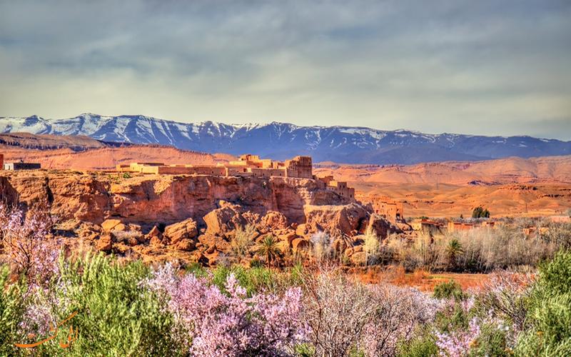 دره رزها مراکش