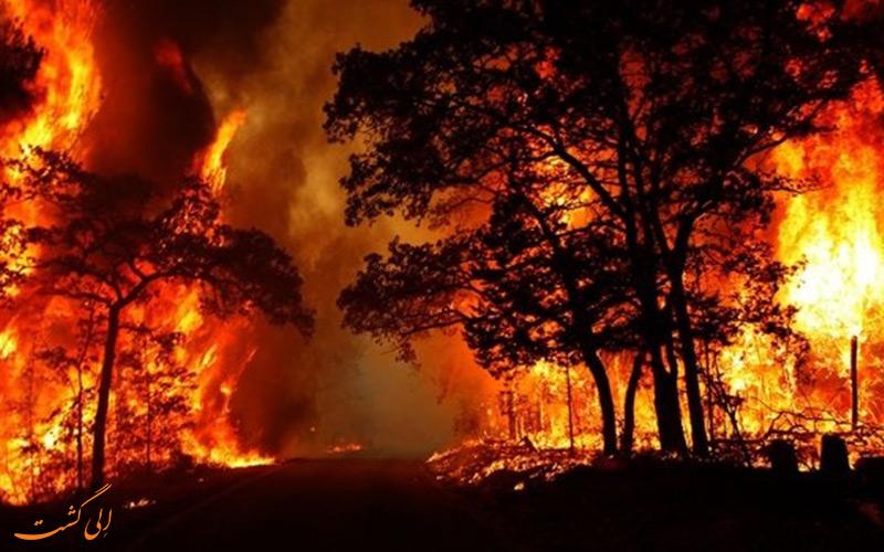 آتش سوزی شبانه در گیلان