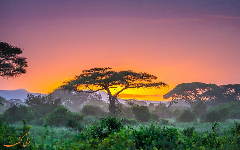 پارک های ملی کنیا