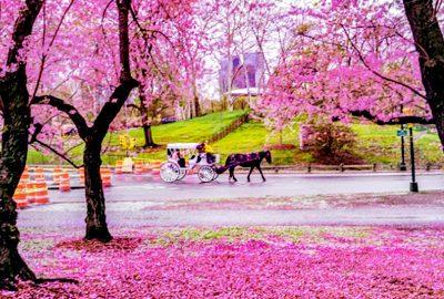 بهترین مقاصد گردشگری در فصل بهار