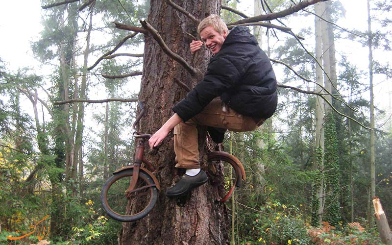 گردشگری در کنار درخت دوچرخه