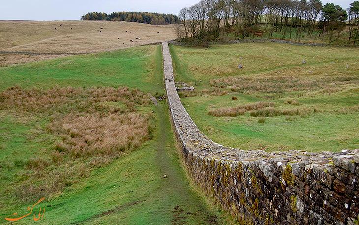 دیوار گرگان