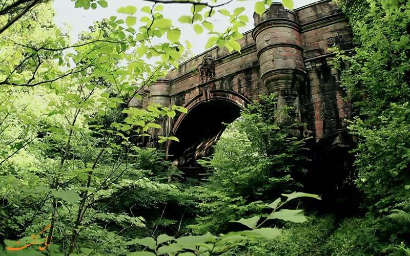 پل خودکشی سگ ها در اسکاتلند