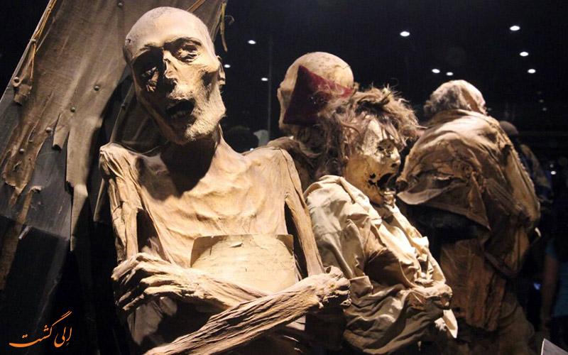 موزه مومیایی های دلاس