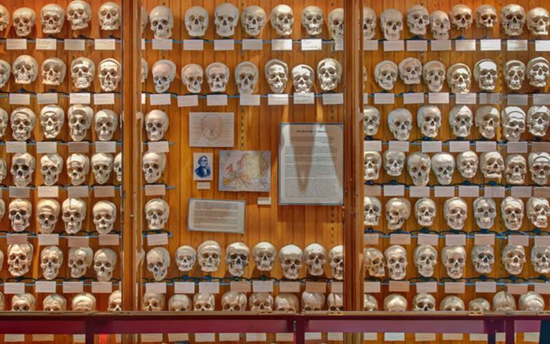موزه ای که ناقل بیماری های عجیب است!!
