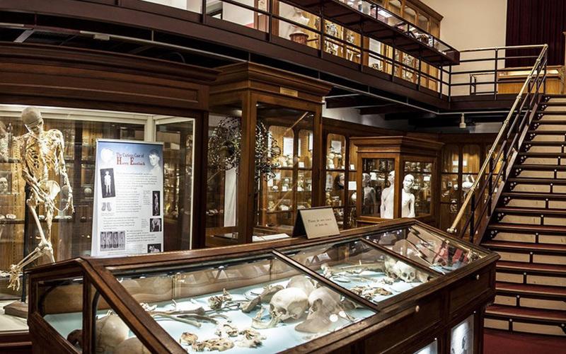 موزه ماتر