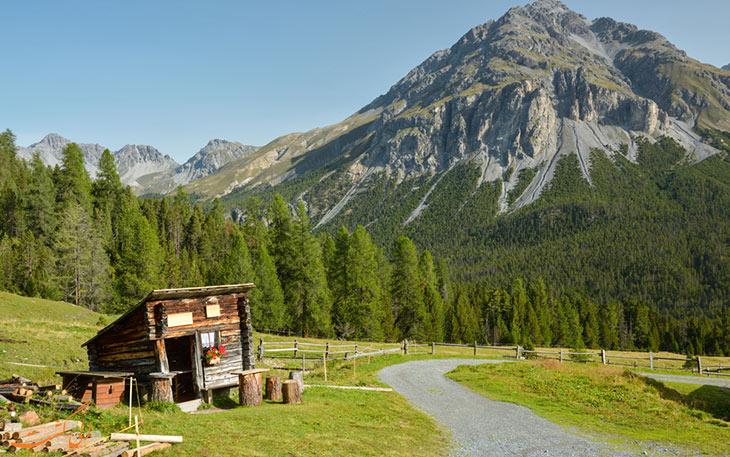 مسیر پیاده روی در پارک کلی سوئیس