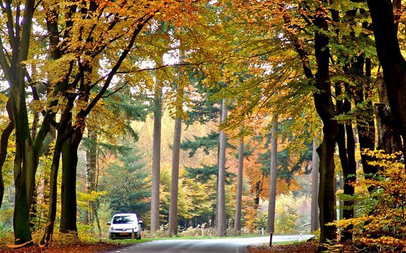 طبیعت در پاییز