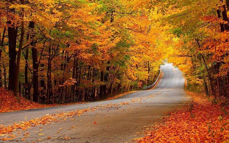 پاییز جنگل النگدره