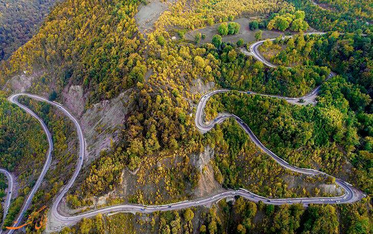 جنگل توسکستانی در استان گرگان