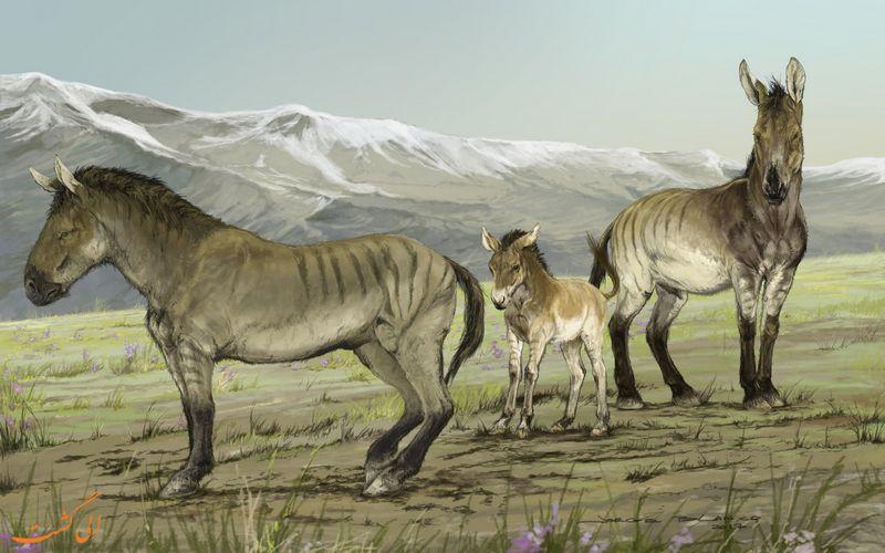 طرحی گرافیکی از اسب های باستانی