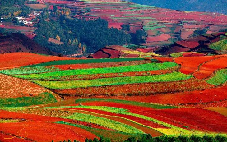 سرزمین سرخ دانگ