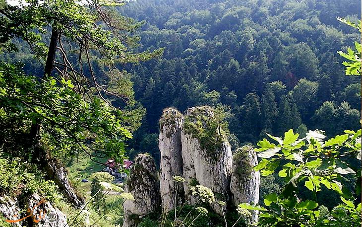 کوه ملی اوجین