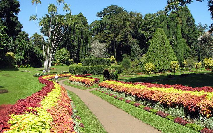 باغ گیاه شناسی در ملبون