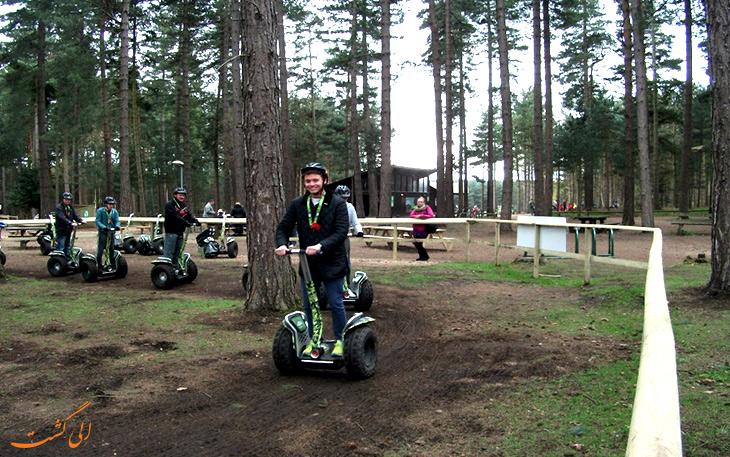 تفریحات جنگل شروود انگلستان