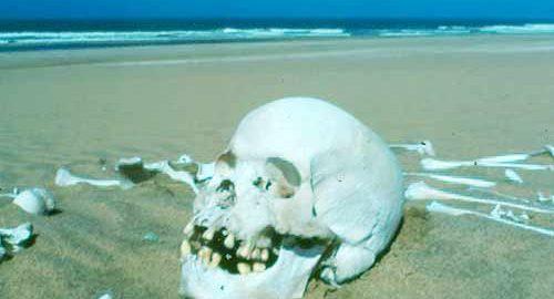 ساحل اسکلت در نامیبیا