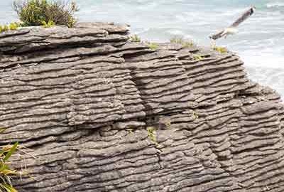 صخره های پنکیکی در نیوزیلند