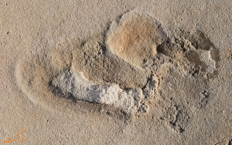 ردپای 85 هزار ساله