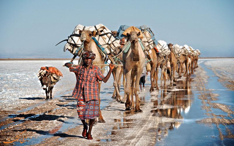 دالول اتیوپی
