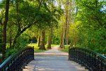 پارک وندل، بزرگ ترین پارک آمستردام