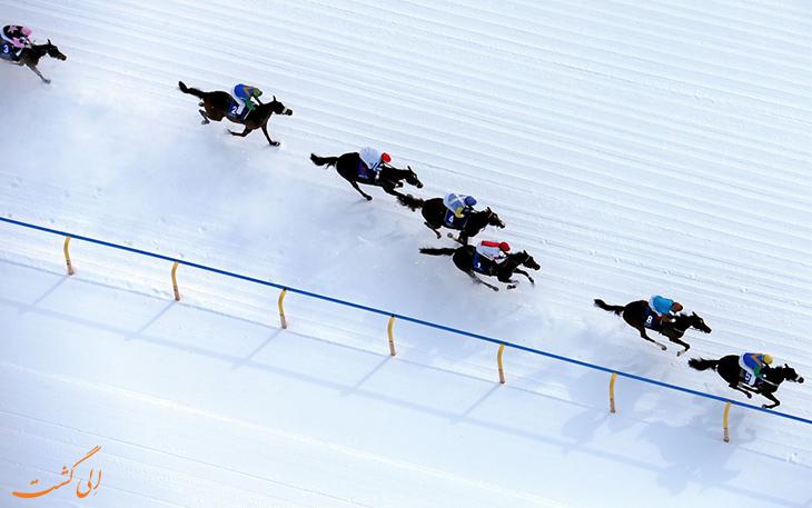 اسب سواری روی برف