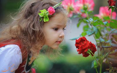 دره گل سرخ بلغارستان