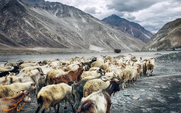 منطقه لاداخ در هند
