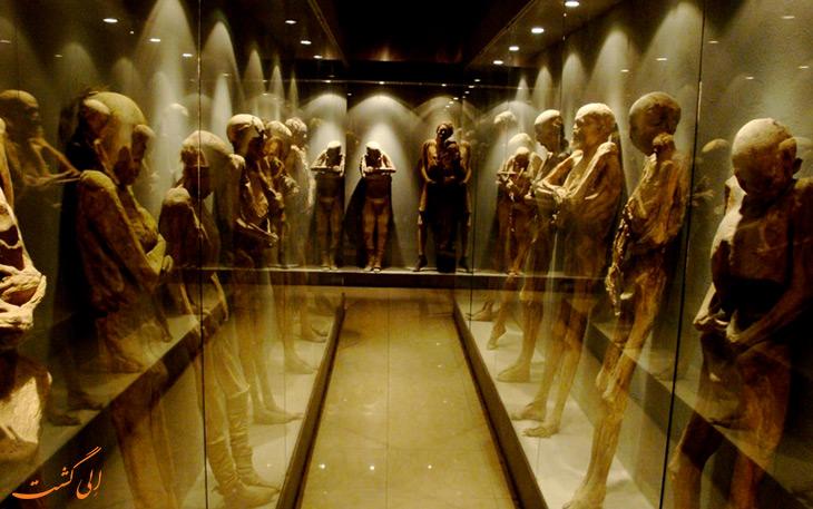 موزه مومیایی