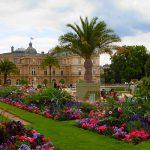 جلوه ای از آرامش در باغ لوکزامبورگ پاریس