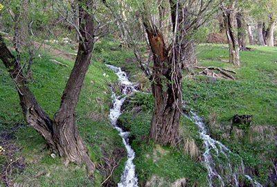 طبیعت گردی در همدان